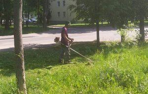 На территории поселения Вороновское ведутся работы по содержанию дворовых территорий