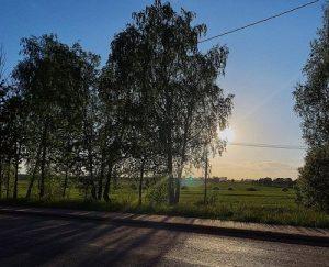 Жара пришла в Московский регион