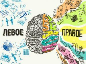 Сотрудники ГБУЗ «Вороновская больница ДЗМ» подготовили рекомендации по улучшению мозговой деятельности