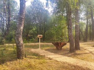 В Вороновском продолжаются работы по созданию пешего экологического маршрута