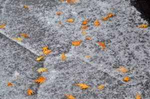 Жителей столицы предупредили о заморозках