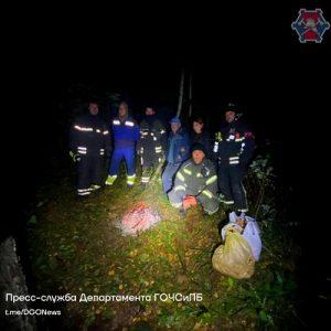За сутки в лесах ТиНАО нашли шестерых заблудившихся человек