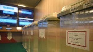 Голоса электронных избирателей пересчитают