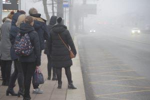 Москву и область ожидает туманная погода